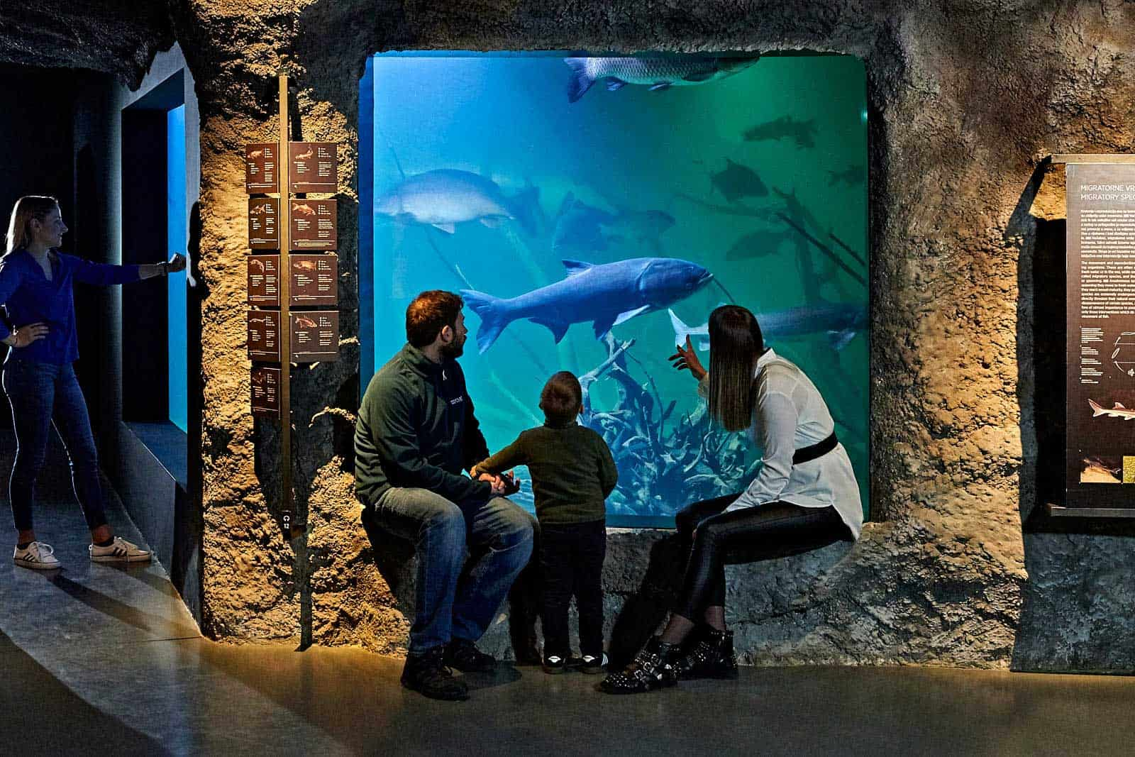 Obitelj Veliki Akvarij
